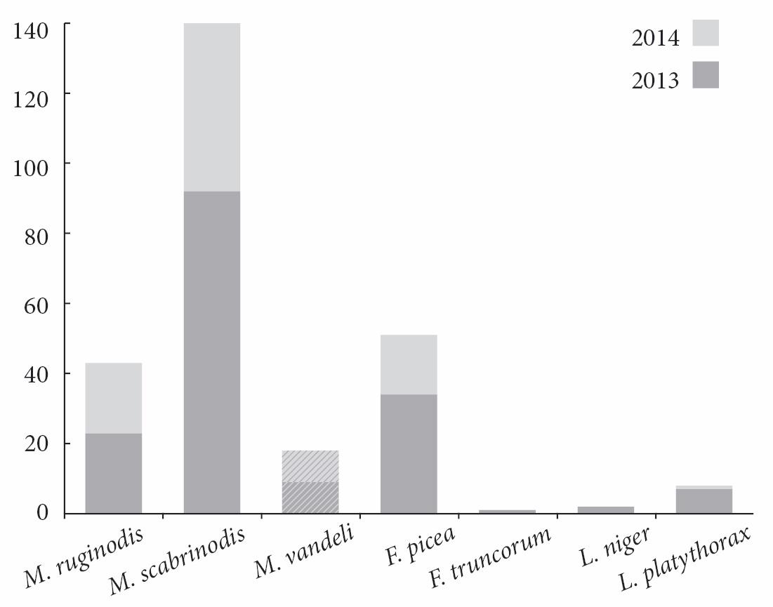 Obr. 1. Počet dělnic jednotlivých druhů mravenců odchycených do zemních pastí na lokalitě V Hati v letech 2013 a 2014. Fig. 1. Number of ant workers captured in pitfall traps in the locality of V Hati in the years 2013 and 2014.