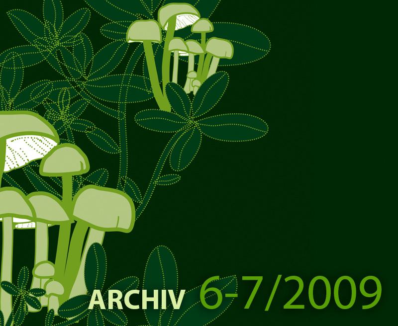 Archiv ročníku 6-7 – 2009