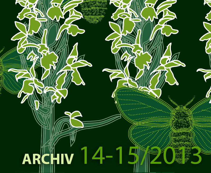 Archiv ročníku 14-15 – 2013