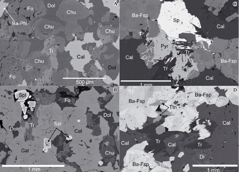 Obr. 2. a) klinohumit-forsteritový mramor (typ A) se zonálním klinohumitem (Chu), forsteritem (Fo) a Ba-flogopitem (Ba-Phl), b) zonální Zn-spinel (Spl) se silikáty a kalcitem (Cal) sodmíšeným dolomitem (Dol), c) zrudněný pyrit (Pyr)-sfaleritový (Sp) mramor (typ B) shyalofánem (Ba-Fsp) a tremolitem (Tr), d) kalcitický mramor (typ B) se zonálním hyalofánem, diopsidem (Di), titanitem (Ttn) a tremolitem; BSE fotografie, P. Gadas. Fig. 2 a) clinohumite-forsterite marble (A type) with zonal grains of clinohumite (Chu), forsterite (Fo) and barian phlogopite (Ba-Phl), b) zonal Zn-spinel with silicates, calcite (Cal) and dolomite (Dol), c) pyrite (Pyr) – sphalerite (Sp) ore-rich marble (B type) with hyalophane (Ba-Fsp) and tremolite (Tr), d) calcite marble (B type) with zonal hyalophane, diopside (Di), titanite (Ttn) and tremolite; BSE images, photographs by P. Gadas