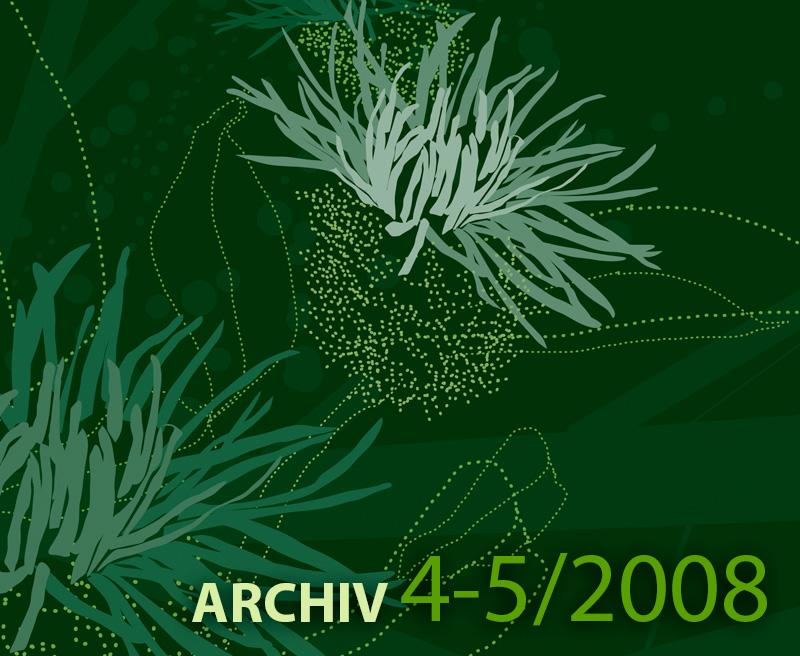 Archiv ročníku 4-5 – 2008